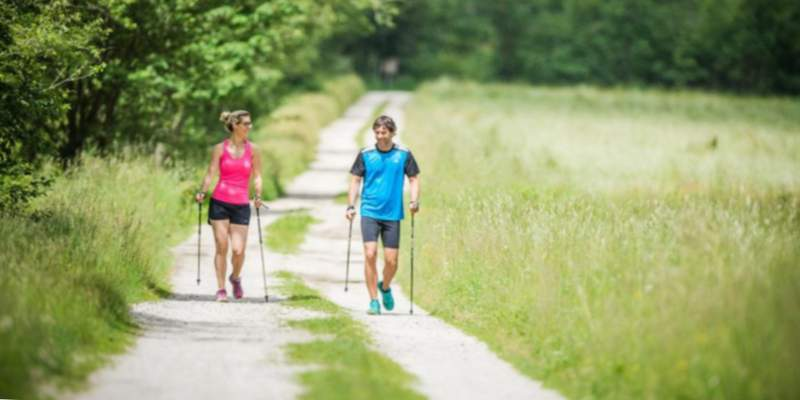 palos nordic walking push